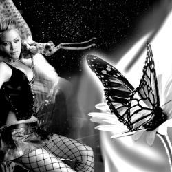 Ночные бабочки казани